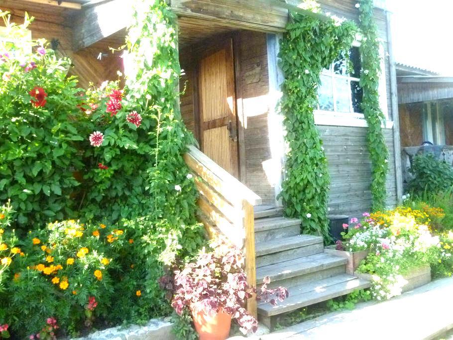 Частный дом - Каргополь