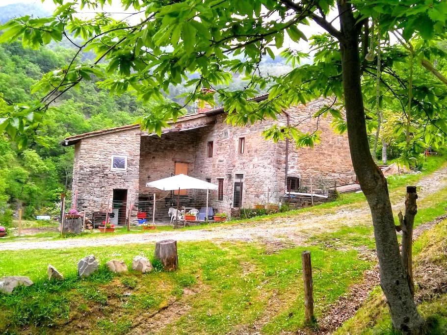 Mimmo Holiday Home Florence. Casentino Mugello - San Godenzo - Hus