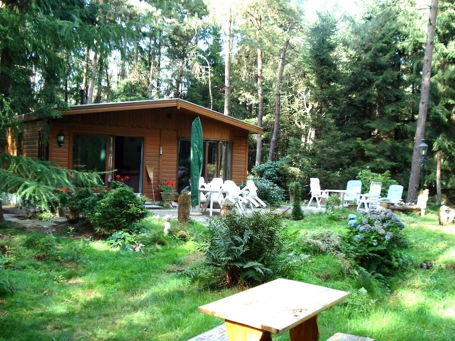 Chalet in privé bos op de Veluwe - Garderen