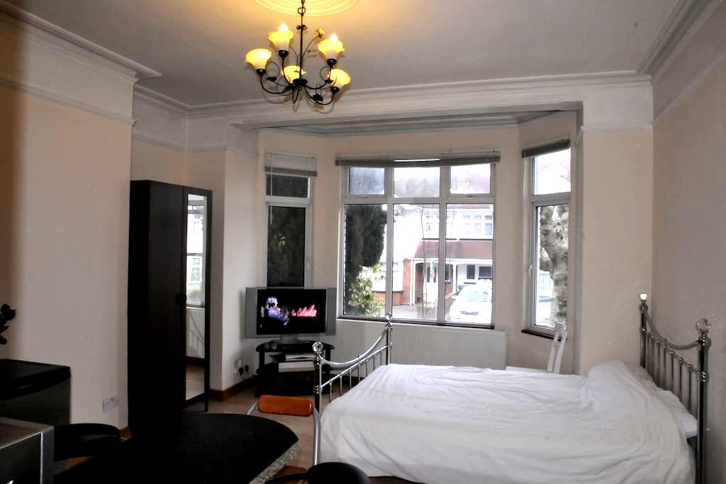 Amazing Studio Flat - London