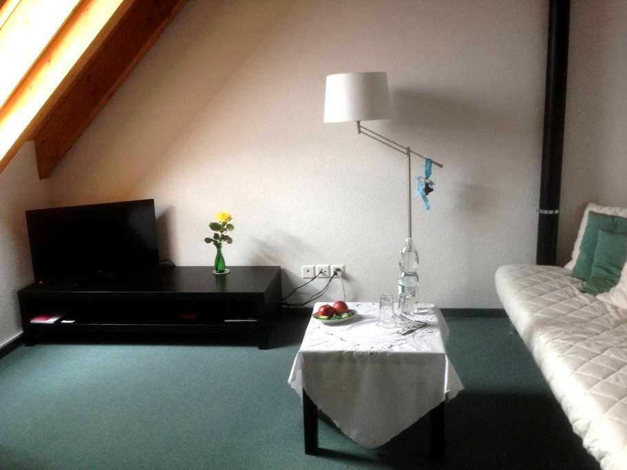 Zürich mit ÖV in 12 Min. erreichbar - 8610 Uster - Ev