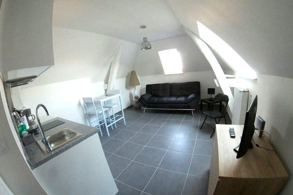 Studio confort et charme Autun plein-centre - Autun - Apartmen