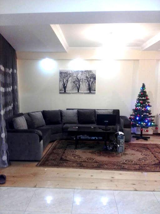 Borjomi Rooms for Rent - Borjomi - Villa