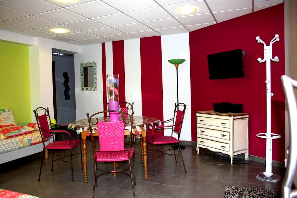 Le Domaine des Fleurs; appartment 4* with sauna - Gérardmer - Wohnung