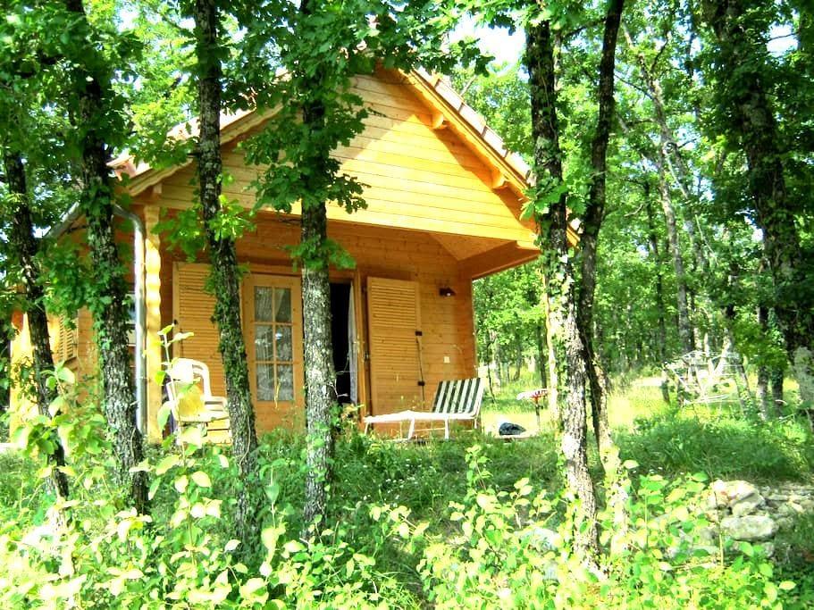 Chambre dans chalet au milieu des bois du Quercy, - Belmont-Sainte-Foi - Domek gościnny