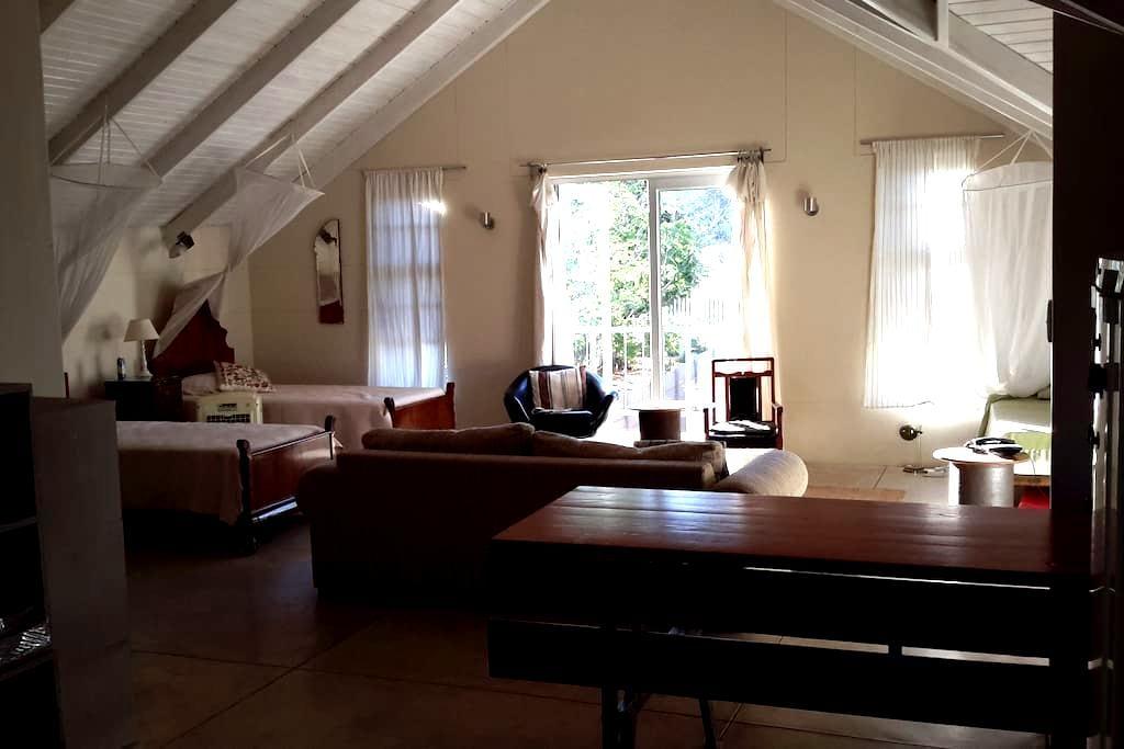 The Loft Cental Apartment - Windhoek