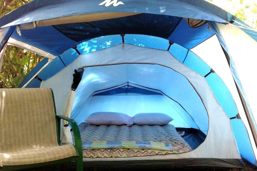 "Big Banana Campground ""Reggae"" - Soufrière - Tent"