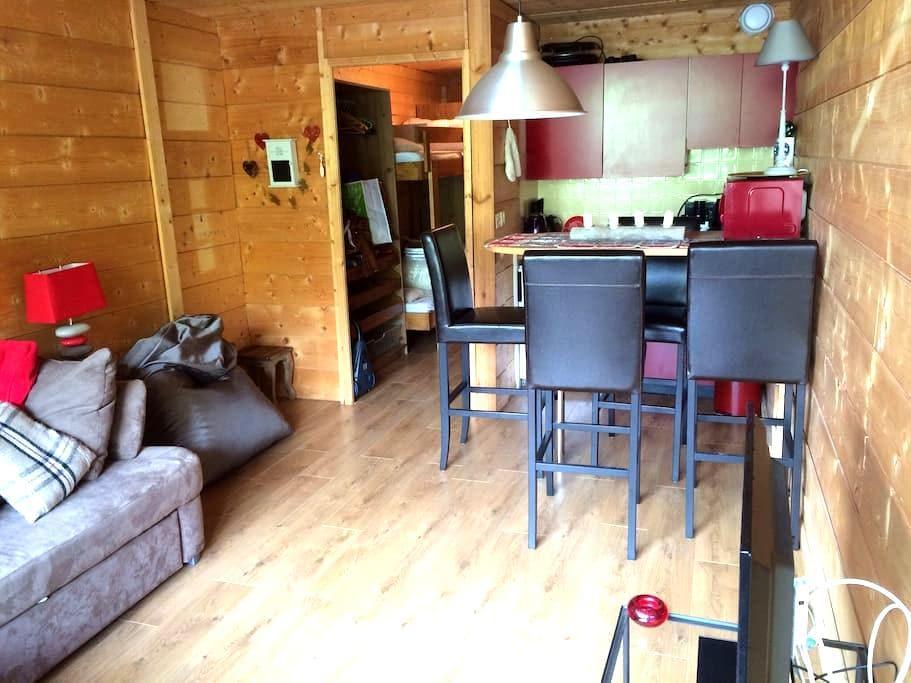 Bel appartement :Tourmalet-Pic MIDI - Bagnères-de-Bigorre