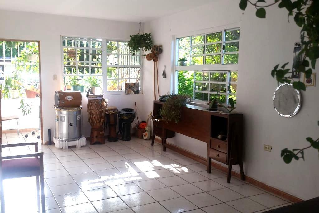 Santurce Retreat Apartment - San Juan - Departamento