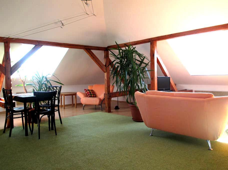 Schöne Dachgeschoßwohnung in Weimar - Weimar - Apartment