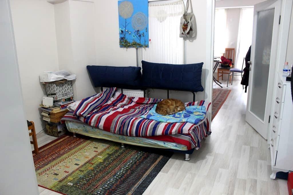 Studio Flat / In the Center of The City - Çanakkale Merkez - Pis