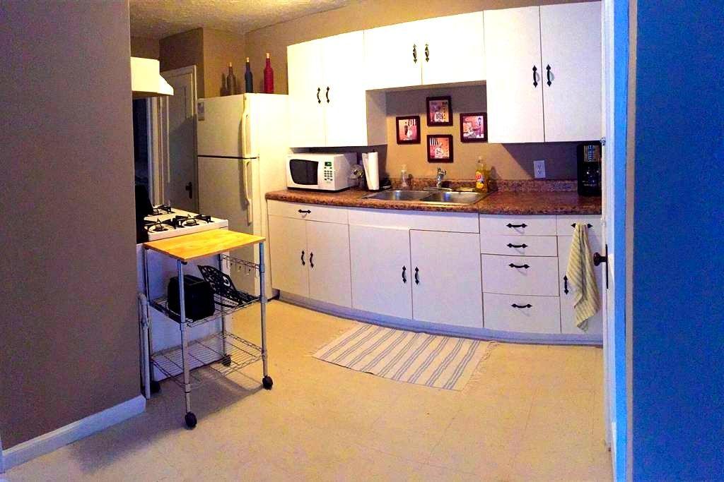Cozy 2 Bd, 1 Bth 4 blocks from Mayo - Rochester - Apartamento