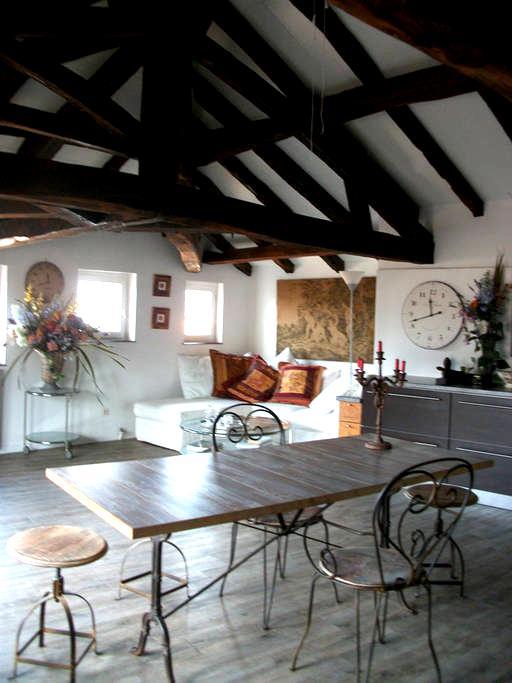 Belle chambre dans maison du XIIIe siècle - Figeac - Lejlighed
