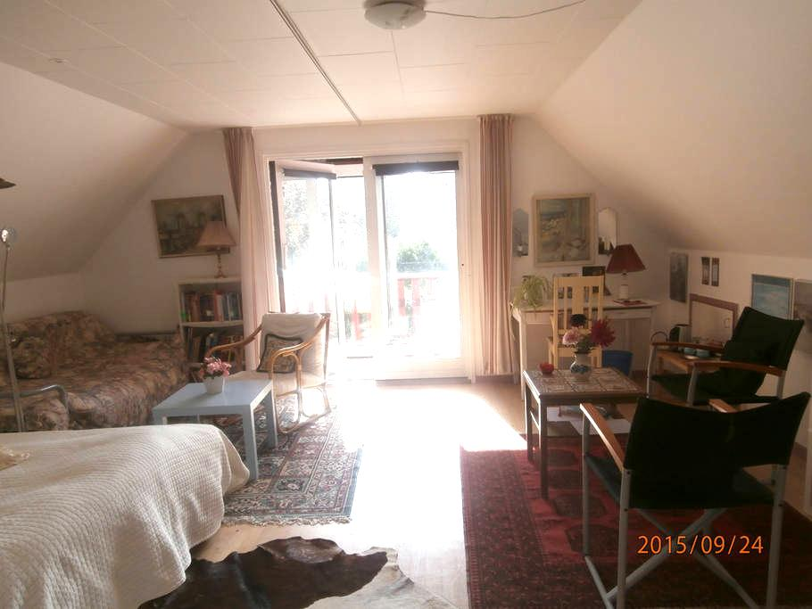 Huge,room with balcony 1h from CPH - Dianalund - Villa
