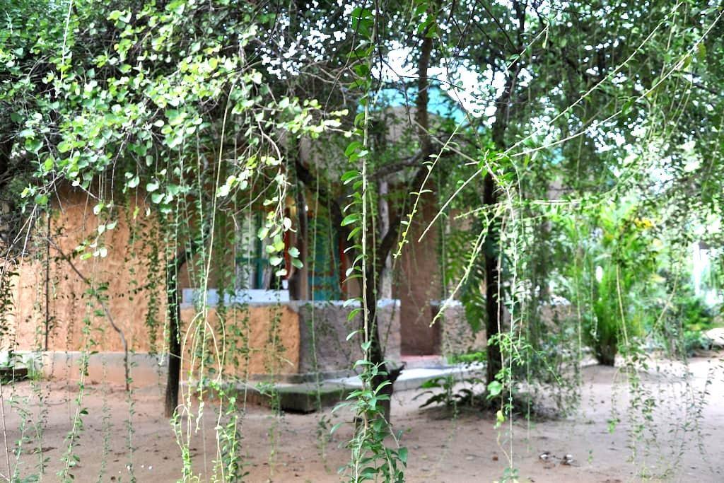AC room (2-4 pax) clay Hut Village - Polonnaruwa - Bed & Breakfast