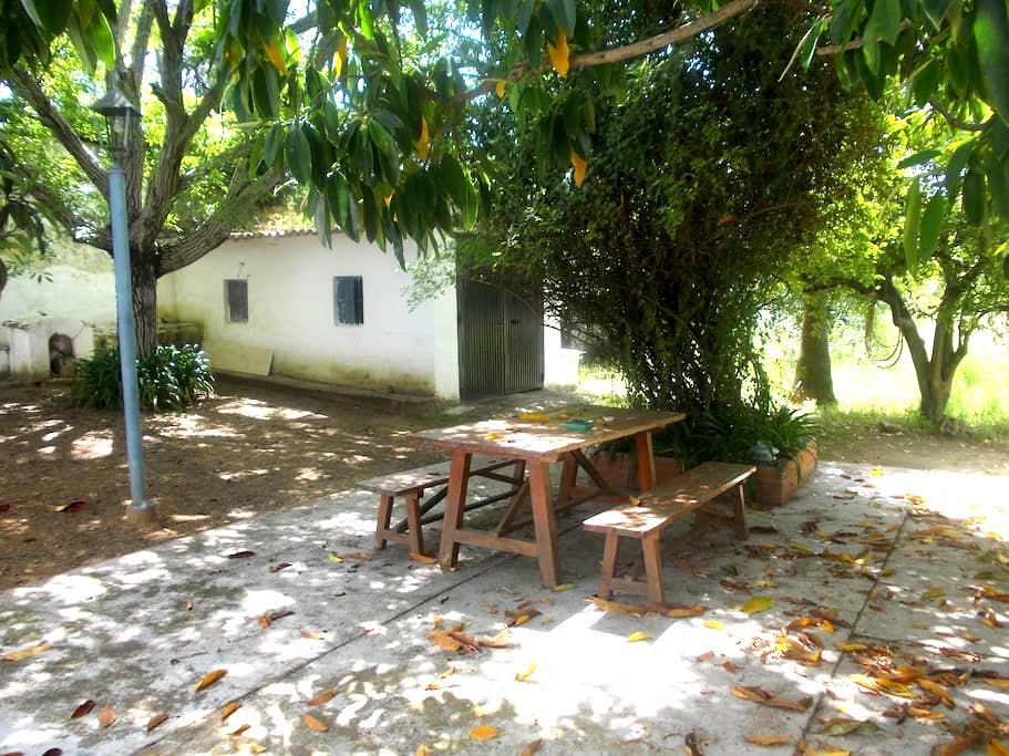 Casa de campo en la ciudad. We speak English - Córdoba - Casa