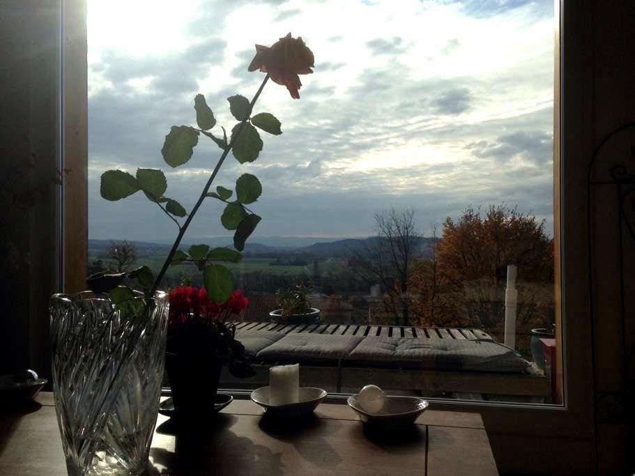 Charmant chalet tres belle vue - Montmeyran - กระท่อมบนภูเขา