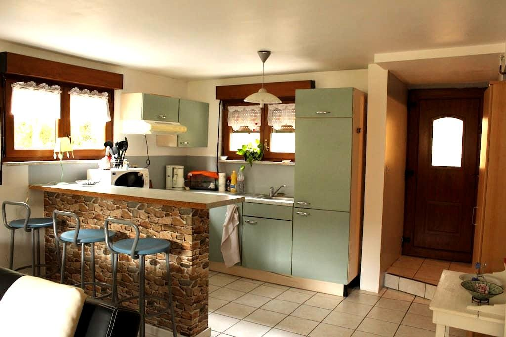 Appartement dans maison - Bourgheim - Appartement