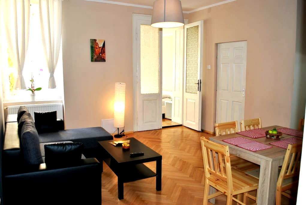 Apartament Ocnei - Large & central - Sibiu - Pis