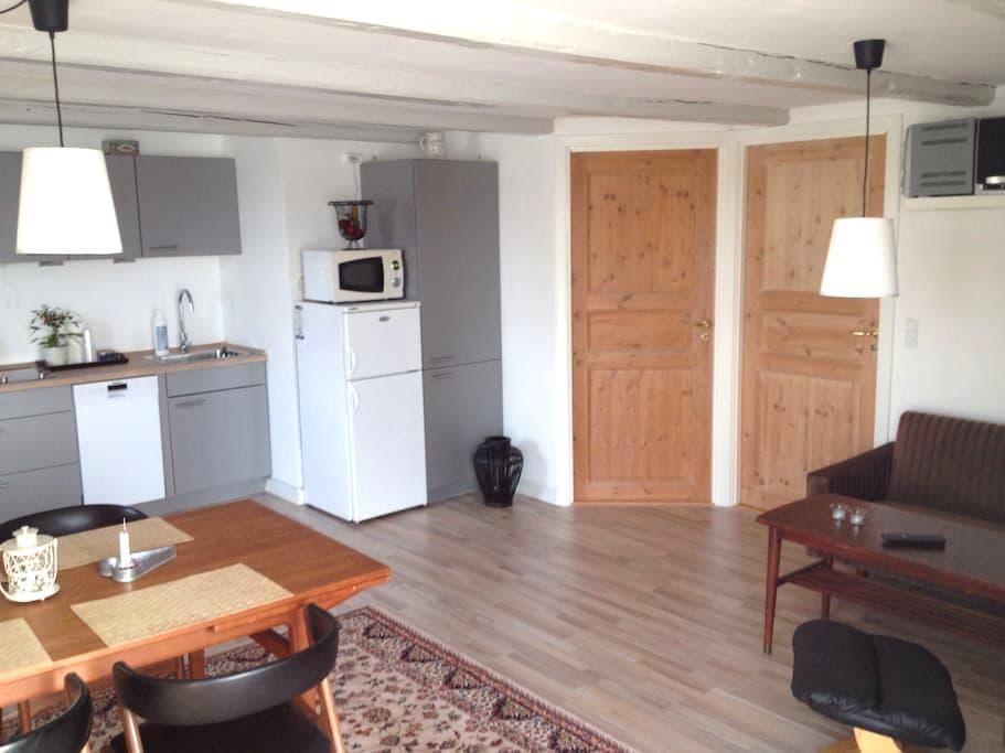 Landlig idyl - Sorø - Wohnung