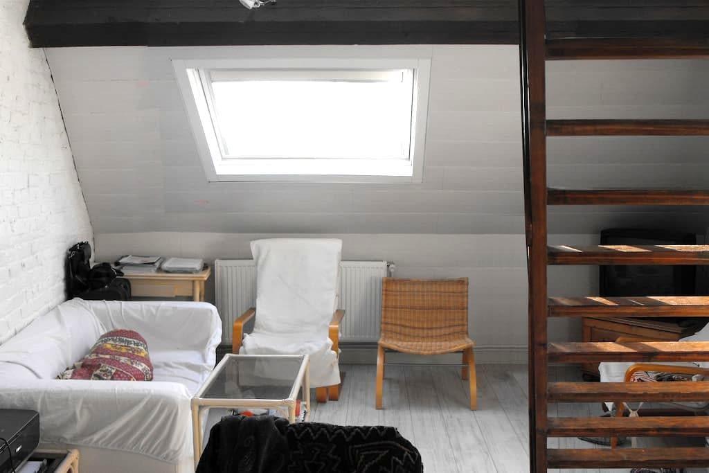 Budget Summer Loft/Duplex in Brussels 2 - Schaerbeek