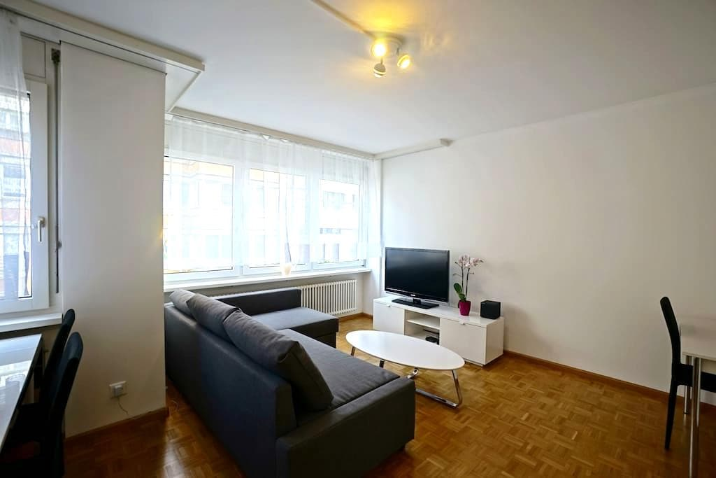 Modern 2 room flat 30 sec. to Rhine - Bâle - Appartement