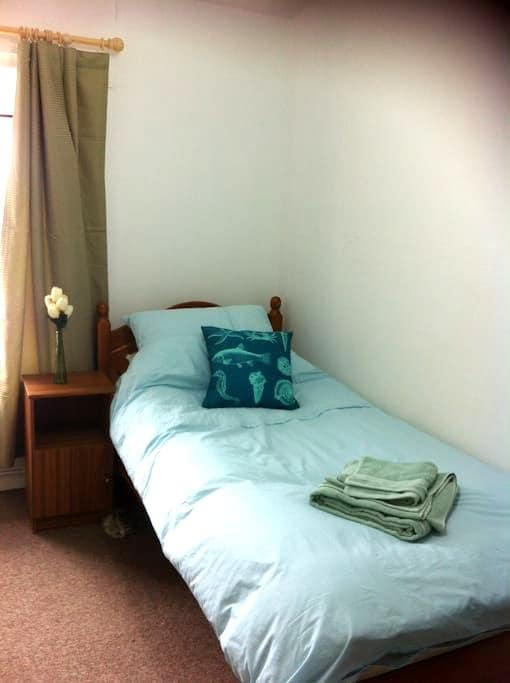 Single Room and Shared Bathroom - Morriston - 獨棟