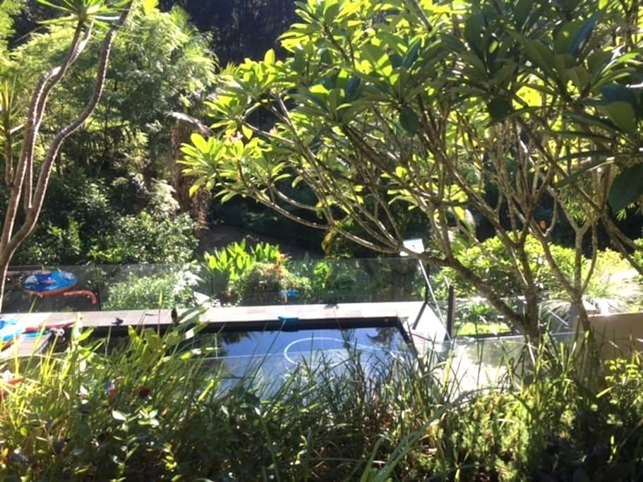 Rainforest Retreat - Wilsons Creek - Kulübe