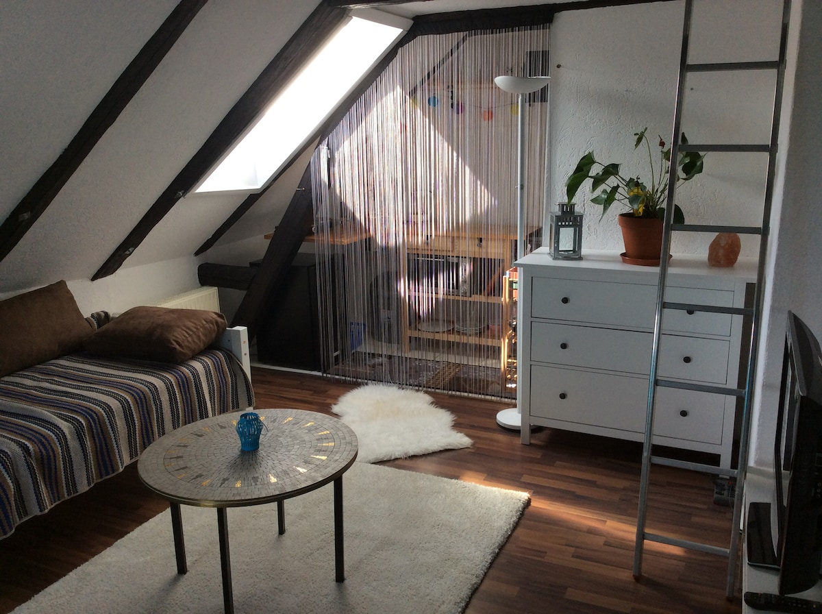 25%Comfort Beach Style Apt.beste Lage /Sonnendeck   Flats For Rent In  Bremen, HB, Germany
