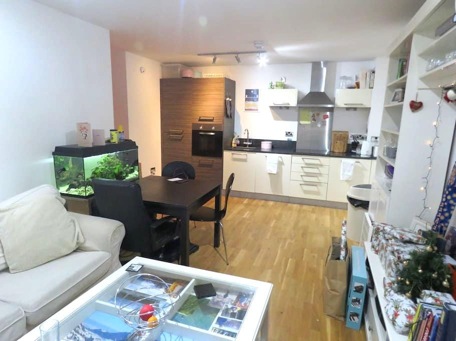 Mordern, light, city centre apartment. - Sheffield - Wohnung