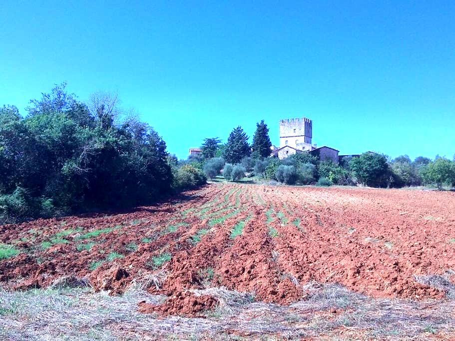 Next to castle of Villa-Siena. heart Francigena - Monteriggioni