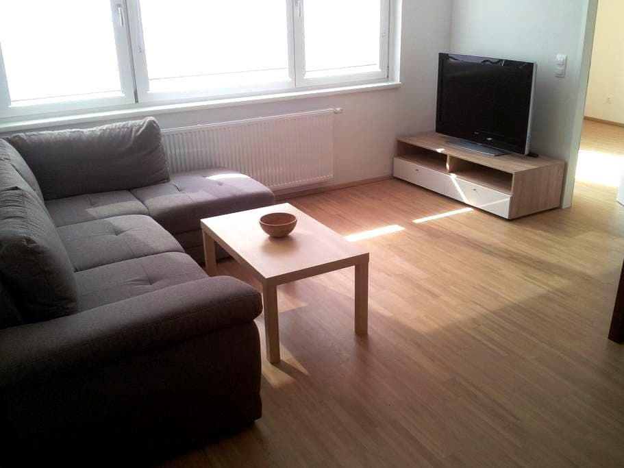 Quiet and bright room in new apartment. - Vienna - Leilighet