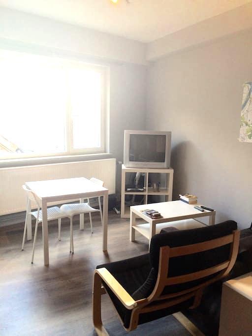 Nice studio in Antwerp - Antwerpen - Lejlighed
