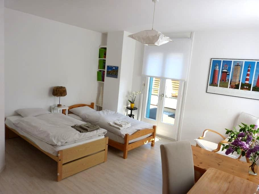 Nice room in residential area - Yverdon-les-Bains - 一軒家