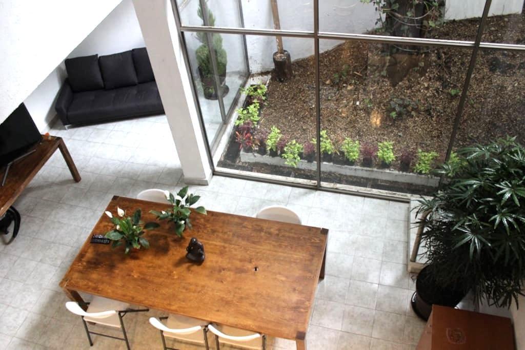 Tree and Nature house in Condesa, Chapultepec park - Ciudad de México - Huis