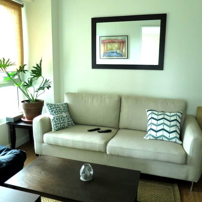 Cozy 2 bedroom condo near Greenbelt - Makati - Condominium