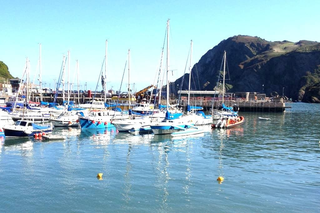 A room with a view!! - Ilfracombe - Aamiaismajoitus