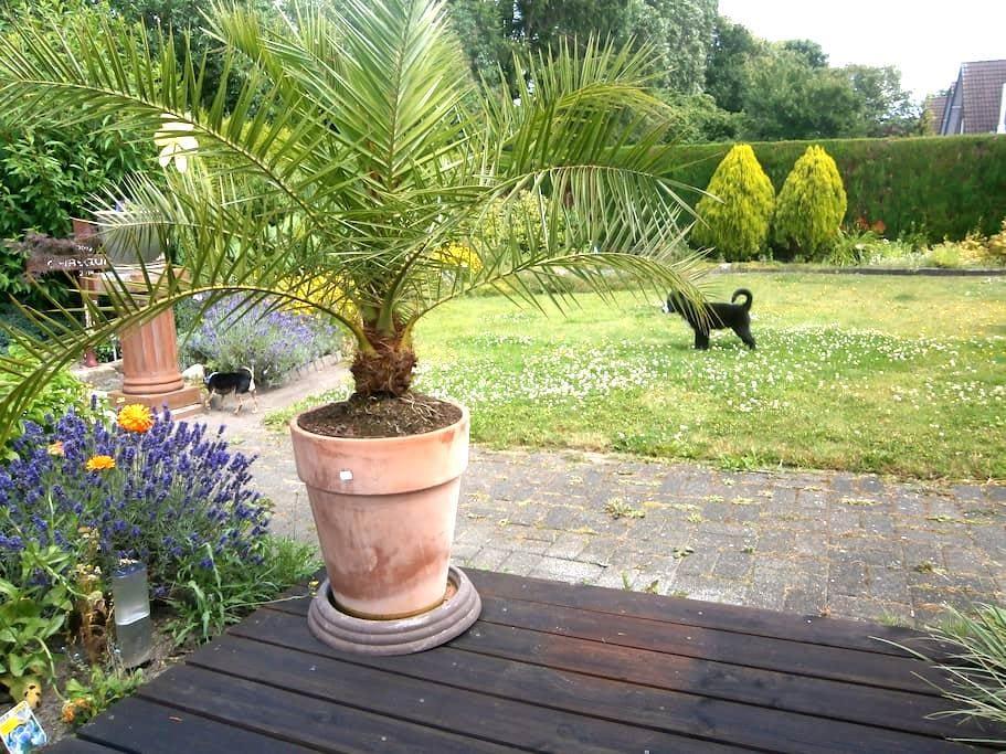 Welcome to our home Bienvenido a nuestra casita! - Gronau (Westfalen) - Hus