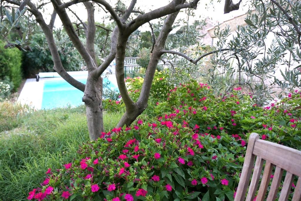Studio avec piscine et jardin  - Beaumes-de-Venise - House