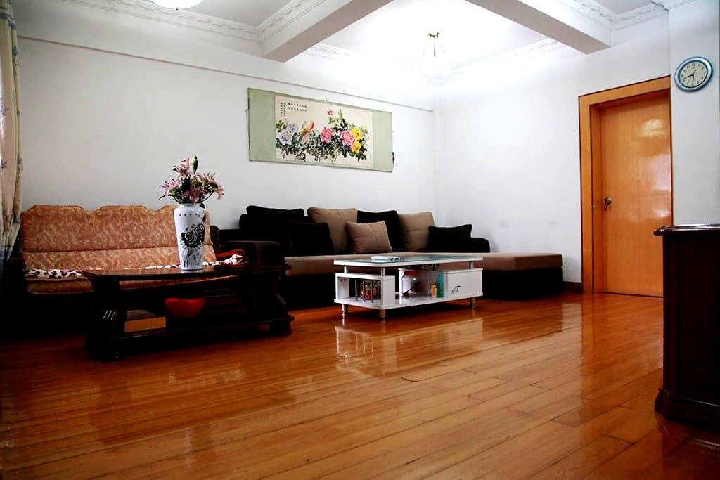 Very spacious comfortable big Suite at city center - Wuhan - Byt