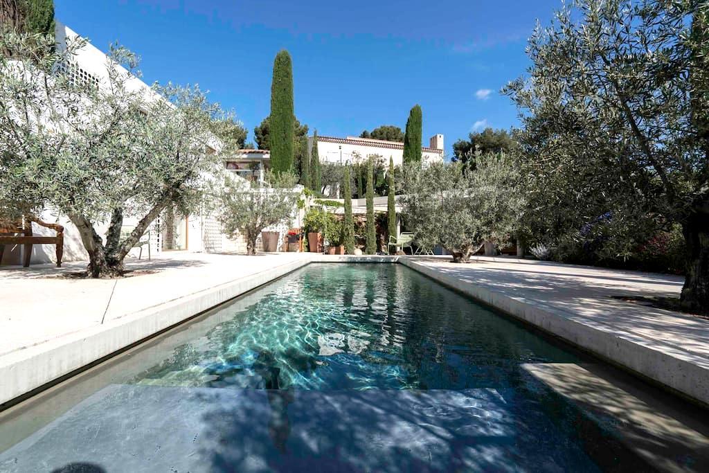 Villa Mandine Chmbre d'Hôtes Cassis - Cassis - Bed & Breakfast