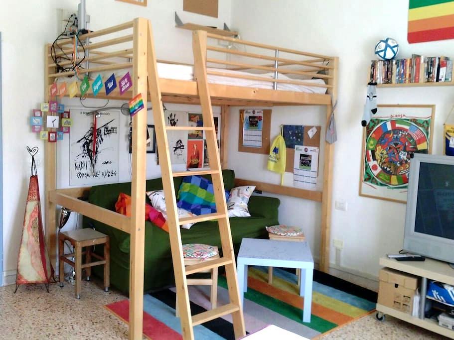 Colorata accogliente in centro - Terni - Apartmen