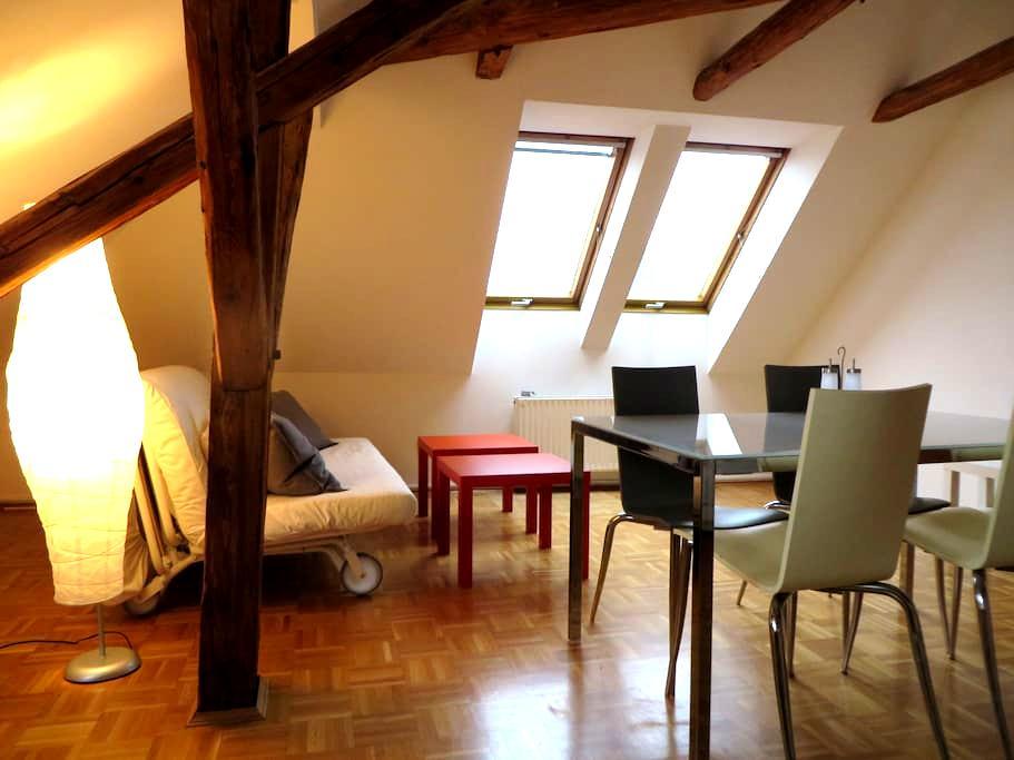 Top-Dachgeschoss im Herzen von Graz - 格拉茨 - 公寓