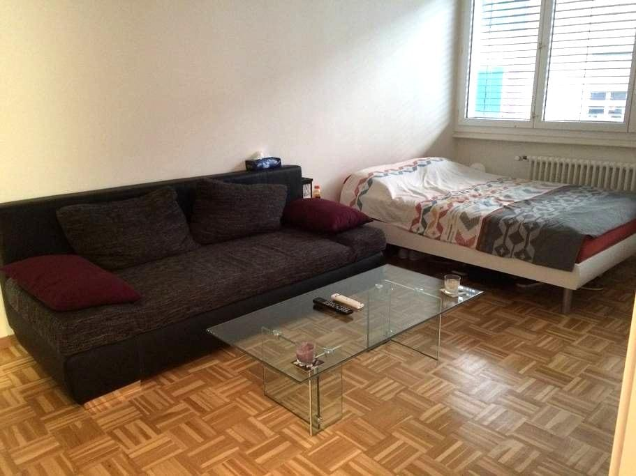 Nice flat in city center of Geneva - Geneve - Huoneisto
