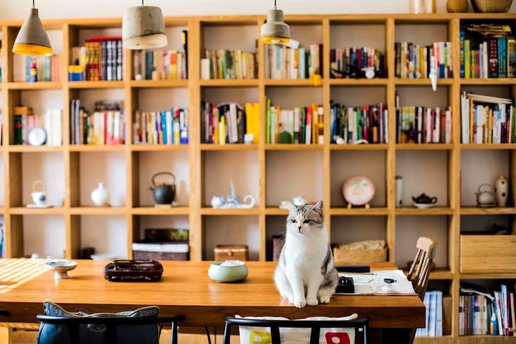 【里墅】漫山茶园中,萌猫相伴的静美时光(独立房间+营养早餐) - 杭州 - Rumah