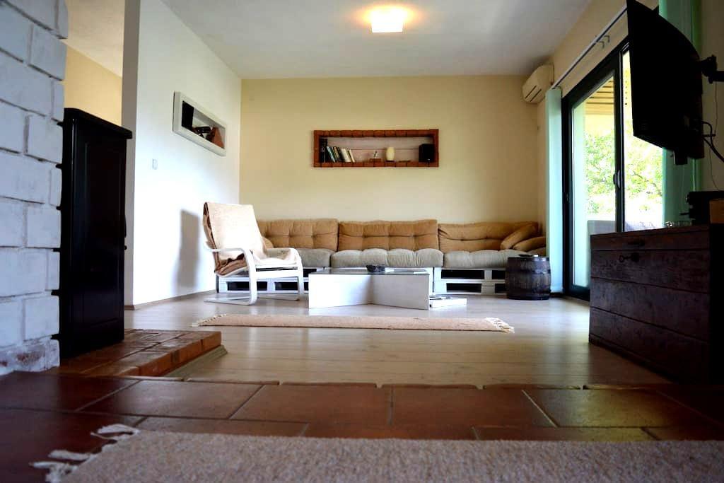 Apartment Dejic - Virpazar - Flat