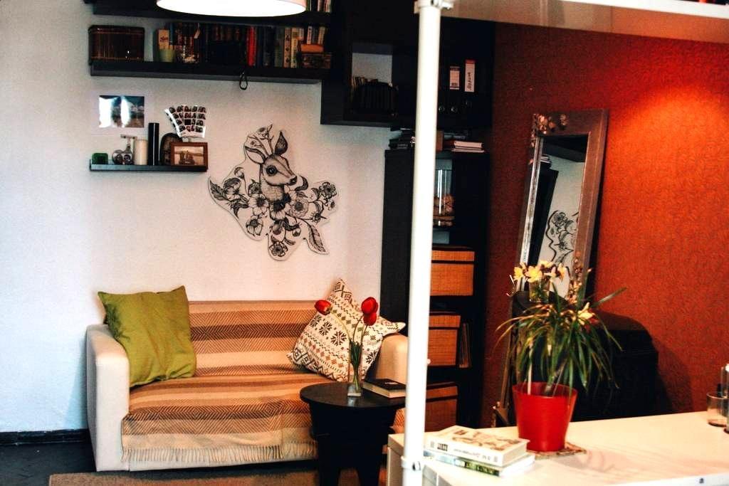 Комната в центре города Кронштадт - Кронштадт - 公寓