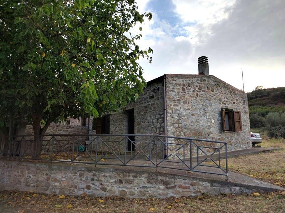 Villino immerso nel verde - Rotondella - House