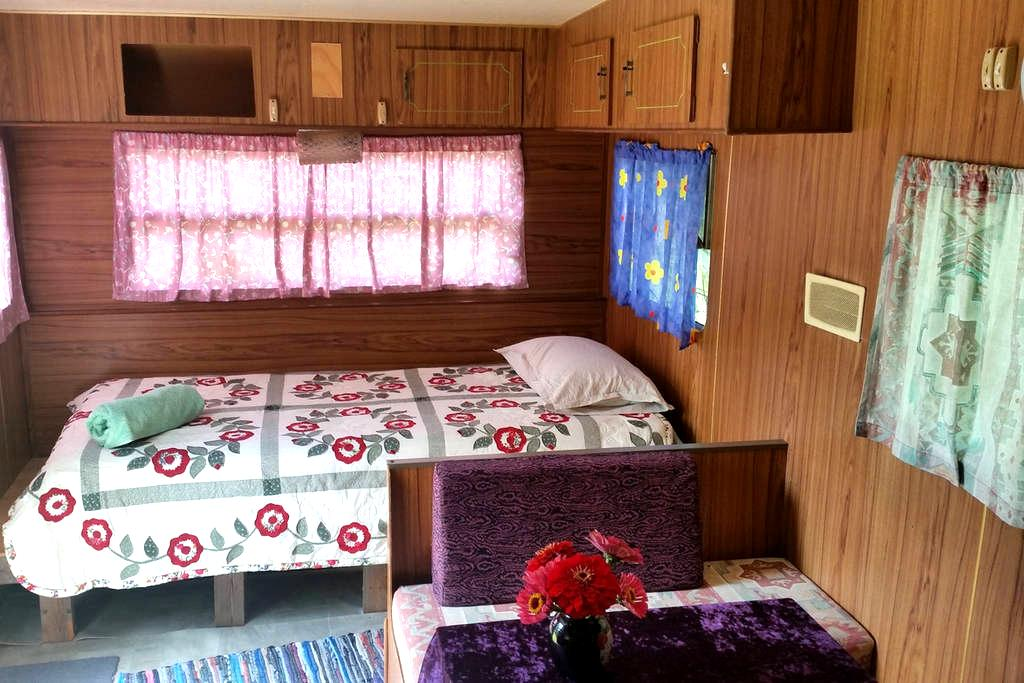 Cosy caravan in Jiggi - Jiggi - Camper/RV