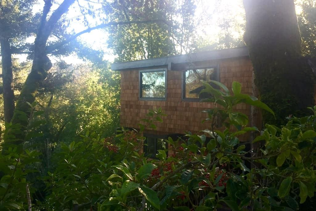 Portola Valley Tree House Retreat - Portola Valley